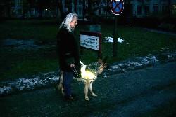 Ninja bei der Arbeit als Blindenführhund  ; Angela Kraft mit BFH Ninja